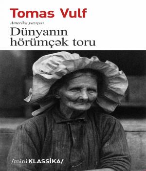 Dünyanın Hörümçək Toru - Tomas Vulf